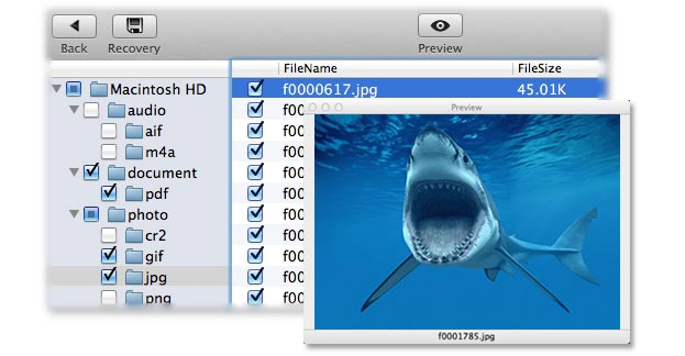 get your lost files back on Mac